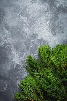 Kerst achtergrond thuja branchon licht beton oude achtergrond tafel. selectieve aandacht. bovenaanzicht met kopie ruimte.