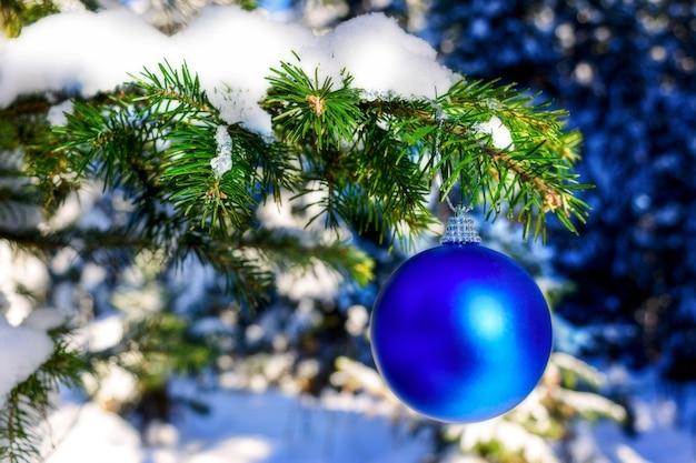Kerst blauw ornament op de vertakking van de beslissingsstructuur van het bos