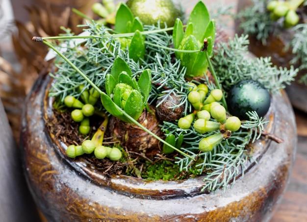 Kerst bloem samenstelling in pot. geocynts-boeket met feestelijke kerstballen, naaldboomtakken. bloemendecor voor thuis, bloemenwinkel in europa. kerst home decor voor nieuwjaarsvakantie.