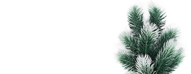 Kerst decotation fir tree branch met sneeuw op witte samenstellingsbanner