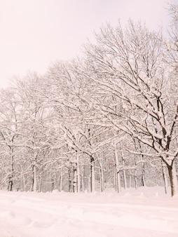 Kerst scène sneeuw