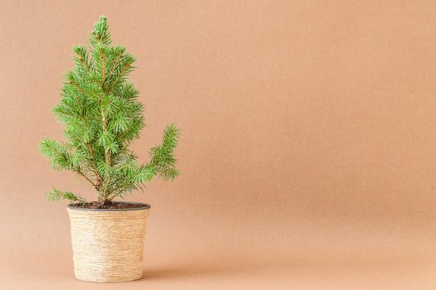 Kerstachtergrond met kleine kerstboom in bloempot op bruin oppervlak
