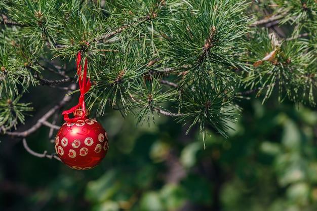 Kerstballen op kerstboom