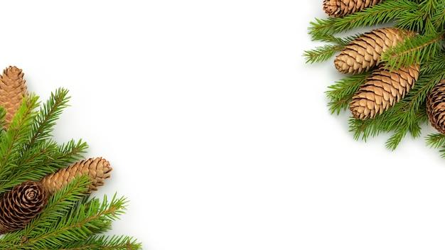 Kerstbomen en kegels liggen met kerstmis op een witte achtergrond.