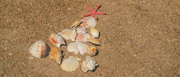 Kerstboom gemaakt van schelpen in het zand