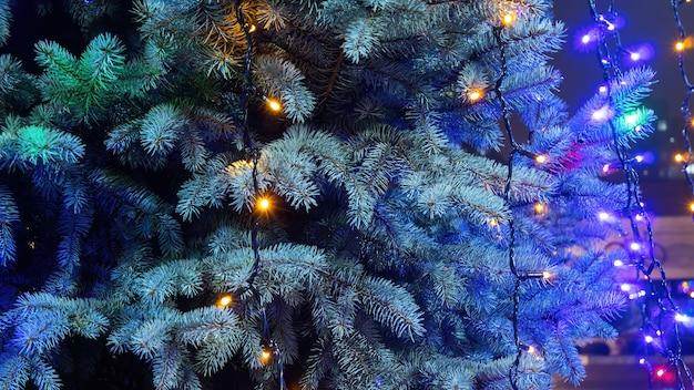 Kerstboom met lampjes erop 's nachts