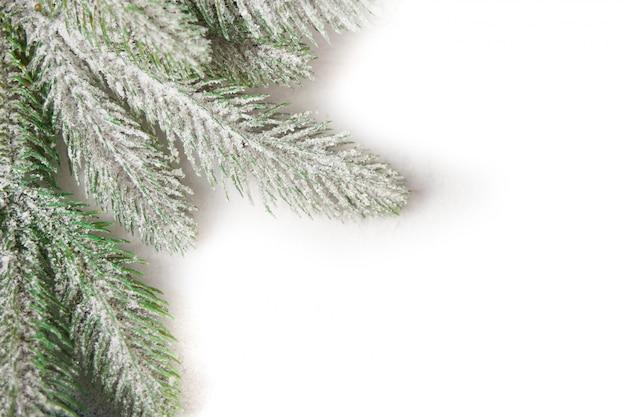 Kerstboomtak op blauw