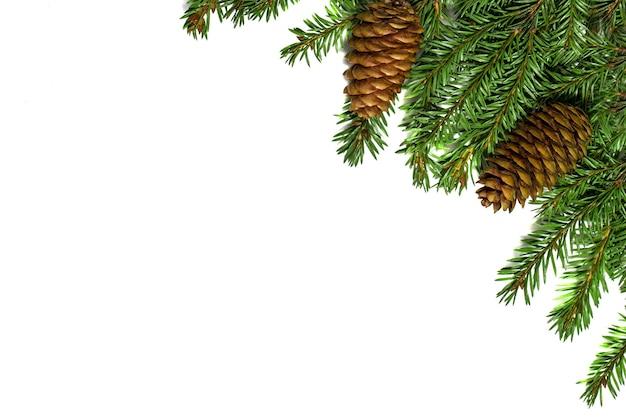 Kerstboomtakken met kegels op wit wordt geïsoleerd. feestelijke kerst- en nieuwjaarskaart