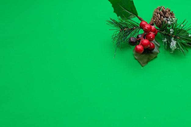 Kerstdecoratie dennen tak in sneeuw bessen en dennenappel op groen