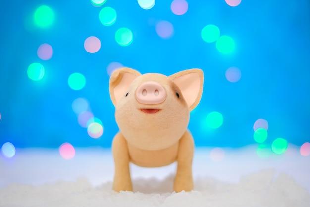 Kerstfoto met een schattig varken tegen het nieuwe jaar 2019 op een magische blauwe achtergrond met verlichting