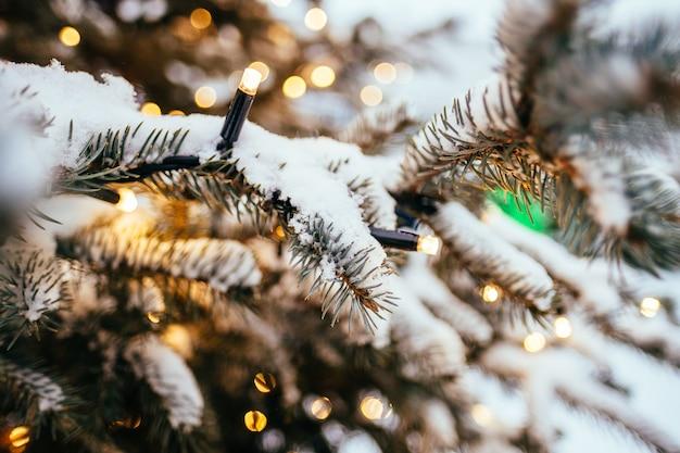 Kerstmis steekt de achtergrond van de sparrentak dicht omhoog gouden gele lichte bokeh aan
