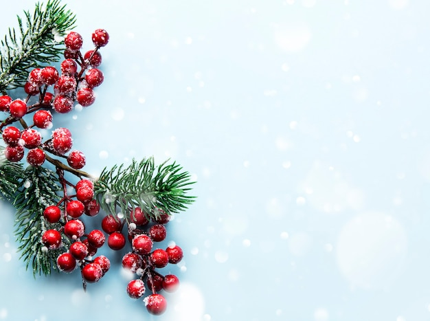 Kerstmissamenstelling met besneeuwde dennentakken op blauwe pastelkleurachtergrond