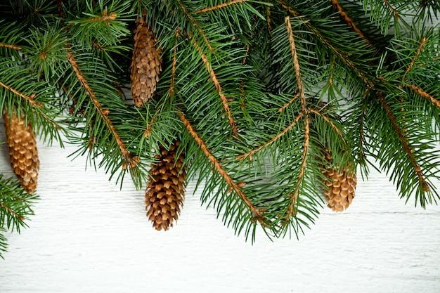 Kerstmisspar met pinecones