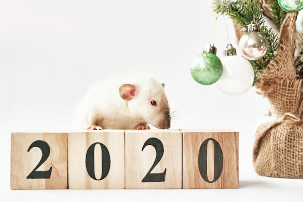 Kerstrat symbool van het nieuwe jaar 2020. jaar van de rat. chinees nieuwjaar 2020. kerst speelgoed, bokeh. rat op de achtergrond van kerstversiering. kerst wenskaartsjabloon nieuwjaar