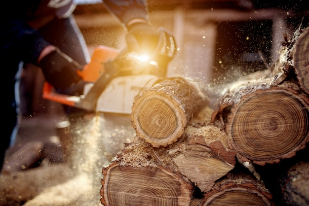 Kettingzaag in actie om hout te zagen. man hout snijden met zaag, stof en bewegingen.