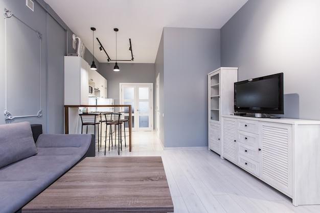 Keuken studio met woonkamer in loftstijl, in witte kleurstelling