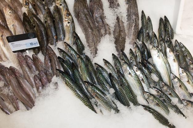Keuze van vis op een marktvertoning in een supermarkt