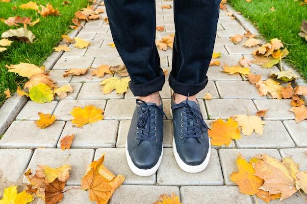 Kever benen in sneakers een herfst park
