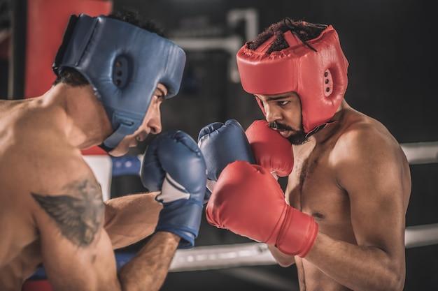 Kickboksen kickboksers in beschermende hemlets vechten en zien er vastberaden uit