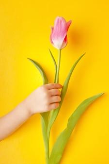 Kid babymeisje met een roze tulp in een hand op de gele ondergrond. pasen, moederdag. lente concept.