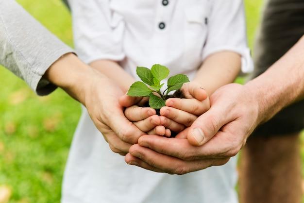 Kid gardening greenery groeiende vrije tijd