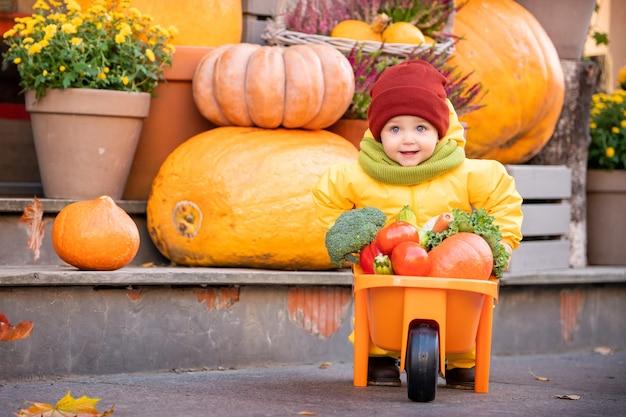 Kid in een gele overall rijdt met een speelgoedauto gevuld met groenten tussen grote pompoenen op de herfstmarkt.
