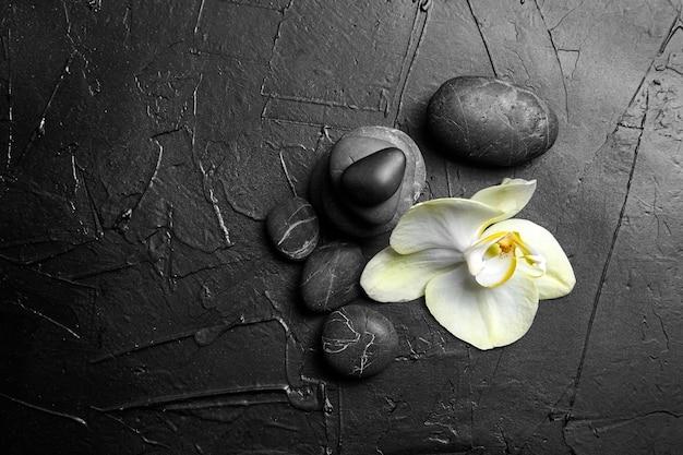 Kiezelstenen en witte gele bloem op zwarte ondergrond