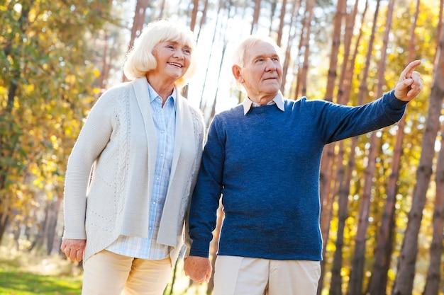 Kijk daar maar eens naar! lage hoekmening van gelukkig senior paar hand in hand en wandelen bij par terwijl de man wegwijst