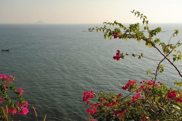 Kijk door de takken van bomen met roze bloemen op de zee in een bewolkte nevel. bloeiende struiken in zonlicht tegen de blauwe zee. prachtige natuurlijke landschap met copyspace.