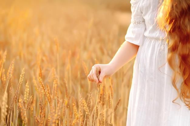 Kind aanraken van rogge of tarwe spruiten in een veld op zonsondergang.