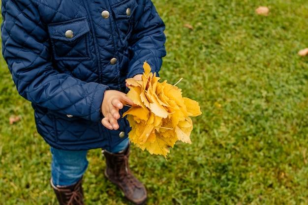 Kind dat gele bladeren op gazon in park houdt