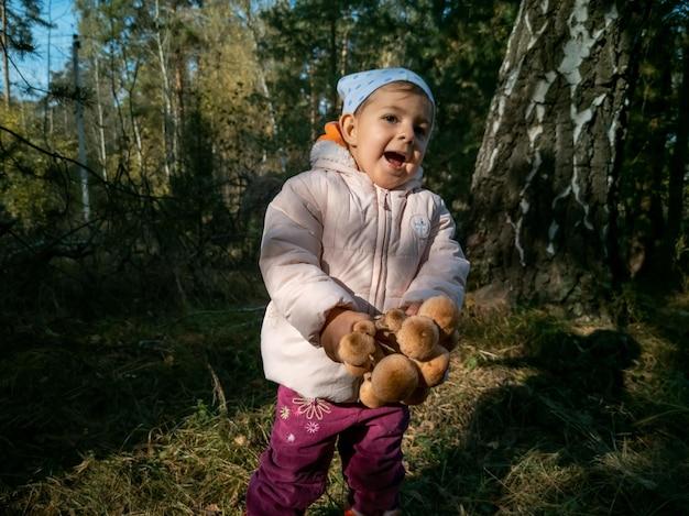 Kind dat honingpaddestoelen verzamelt in de herfstbos, peuter van de close-up, heeft mooie eetbare