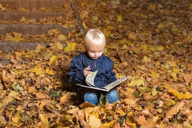 Kind draait de pagina's in het boek. jongen zit in het herfstbos en leest.