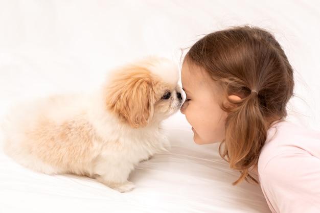 Kind en baby hond neus aan neus kind spelen met puppy op wit bed thuis vriendschap huisdier petrenthood