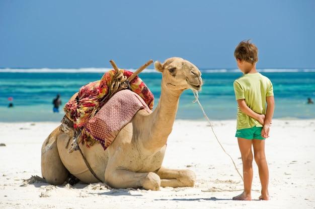 Kind en een kameel op het strand
