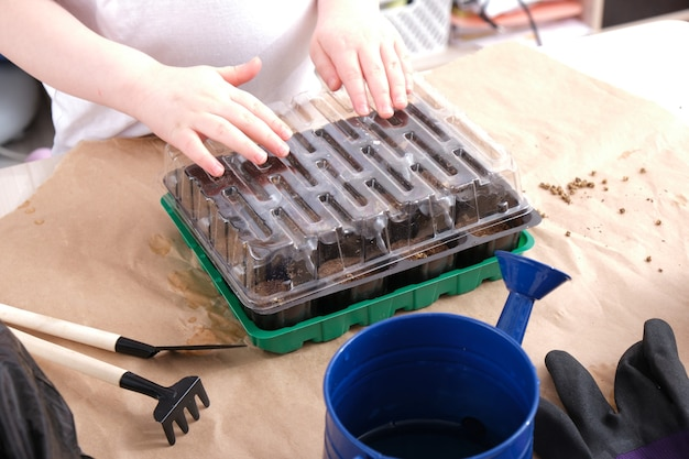 Kind en kleine zaailingenkas, zaailingencontainer met weestabletten, tuinartikelen op tafel