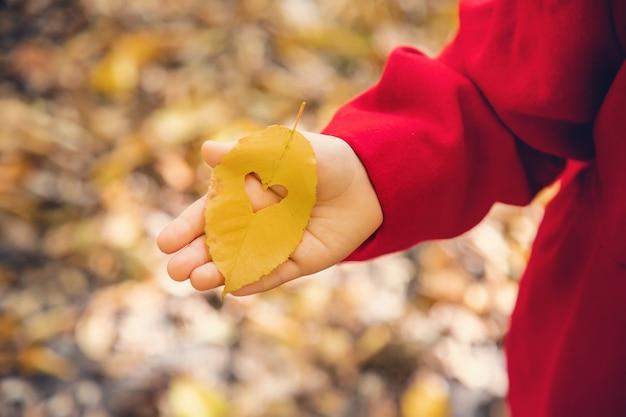 Kind in een rode jas met herfstbladeren
