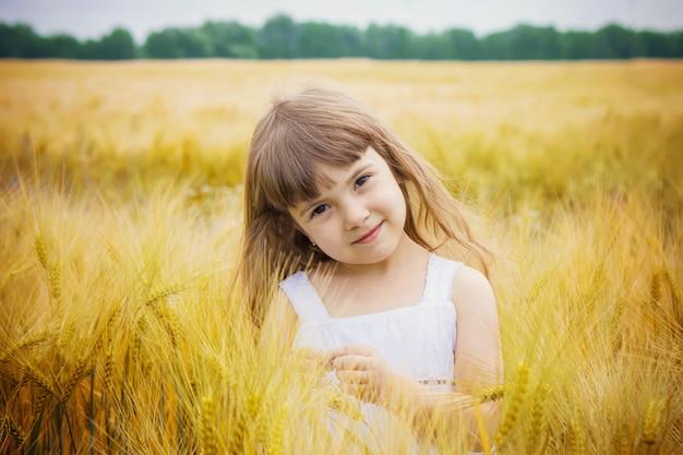 Kind in een tarweveld. selectieve aandacht. natuur