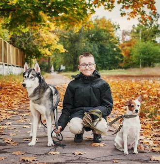 Kind jongen met husky honden en jack russell terrier wandelingen in het park in het najaar