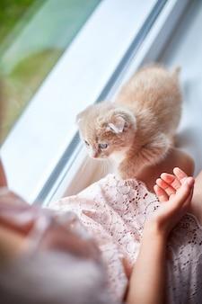 Kind meisje speelt met een kleine speelse kitten thuis vensterbank.