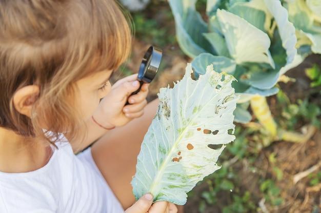 Kind met een vergrootglas in haar handen.