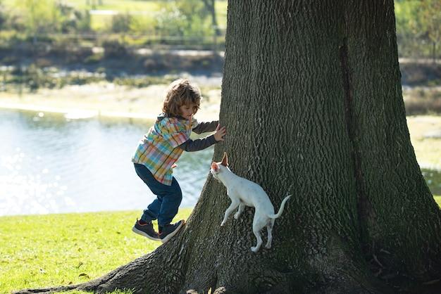 Kind met hond klimt in een boom jongen jongen speelt met puppy in een park en klimt peuter en huisdier leer...