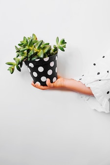 Kind met ingemaakte plant