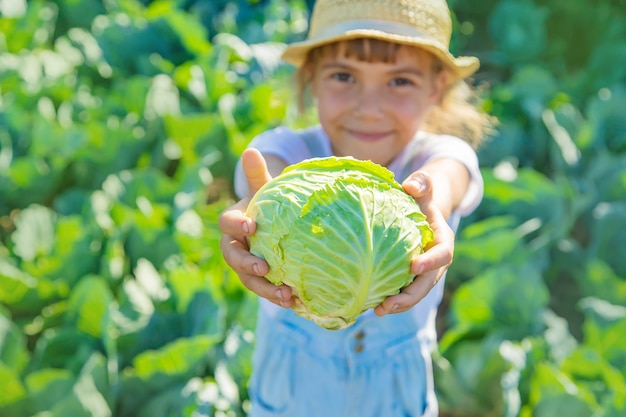 Kind met kool en broccoli in de handen. selectieve aandacht.
