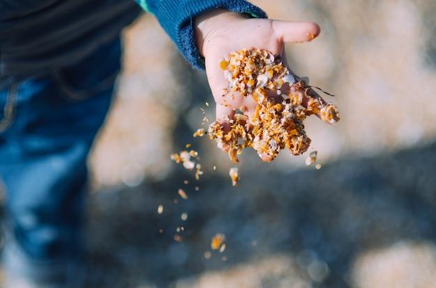 Kind op vakantie, spelen met zand, hand en zand close-up