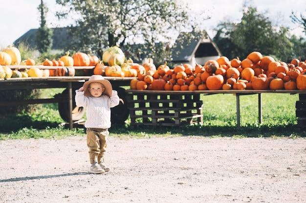 Kind pompoenen plukken op pompoenveld schattig kind op boerderijmarkt thanksgiving-vakantieseizoen
