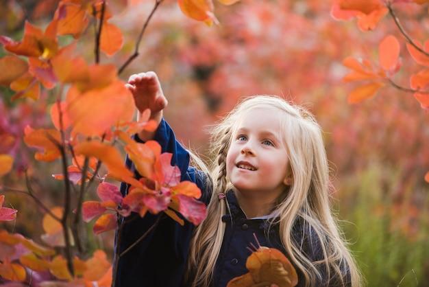 Kind raakt buiten bladeren tijdens een wandeling in het park
