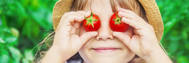 Kind verzamelt een oogst met zelfgemaakte tomaten. selectieve aandacht.