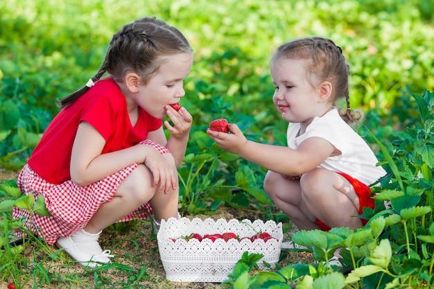Kindercollectie van aardbeien