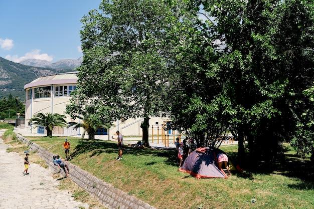 Kinderen en volwassenen zijn bezig met touwklimmen op de helling tegen de achtergrond van groene bomen